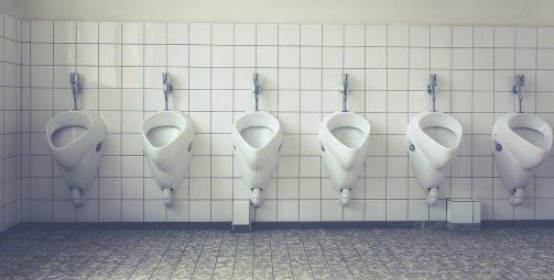 toilet, loo, wc